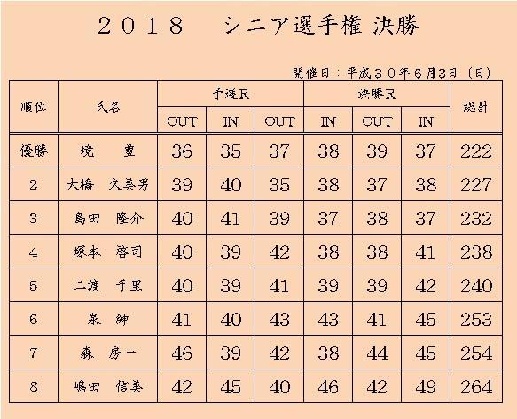 H30.6シニア選手権決勝.jpg